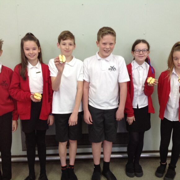 Welcome to the School Council!