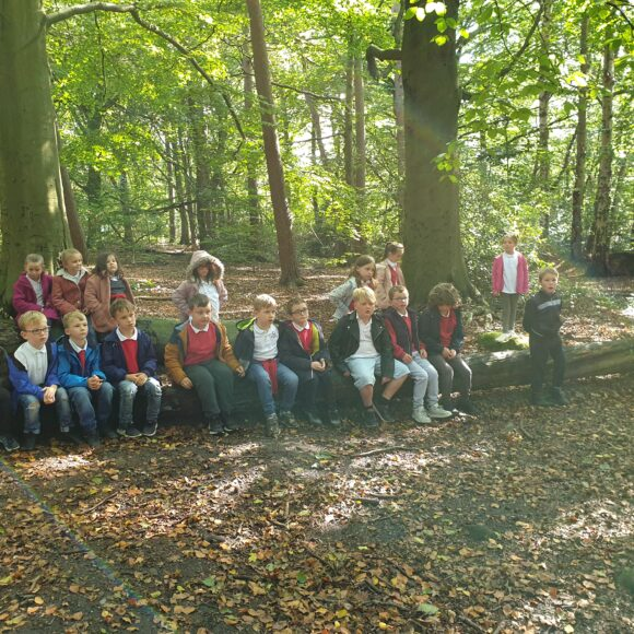 Class 3's Visit to Tropical World – 8 October 2019