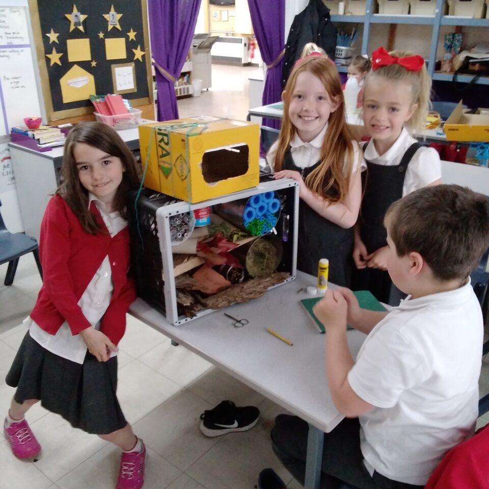 Class 3 – Welcome Miss Redshaw and We've Been Planning Animal Homes!
